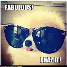 fabulous.jpg
