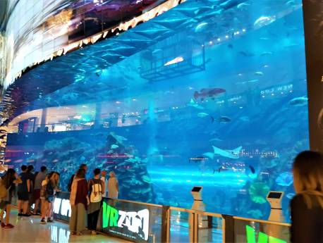 Aquarium outside