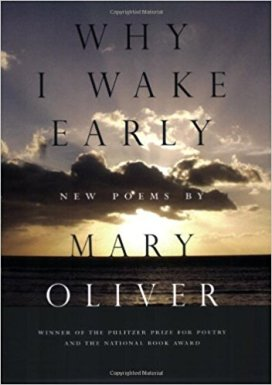 why i wake early mary oliver