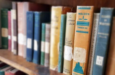 Vienna library bookshelf Walden.jpg