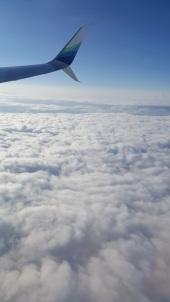 airplane ride.jpg