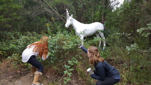 Cox farm unicorn