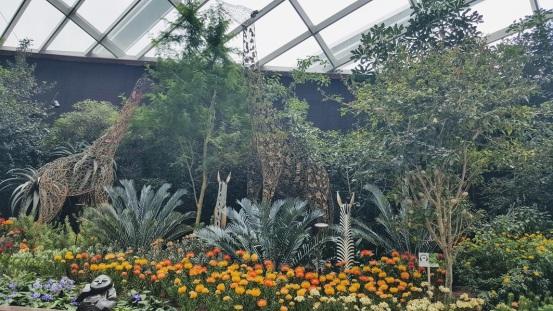 animal sculptures flower dome